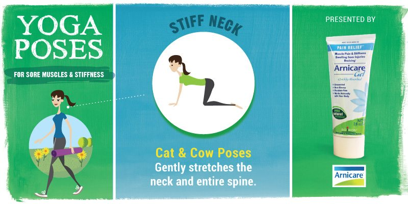 Yoga for Stiff Neck - Cat & Cow Poses
